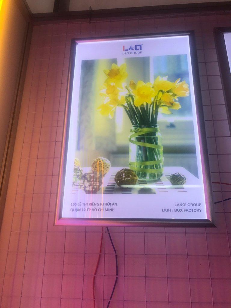 hộp đèn lightbox quảng cáo led l&q việt nam chậu hoa