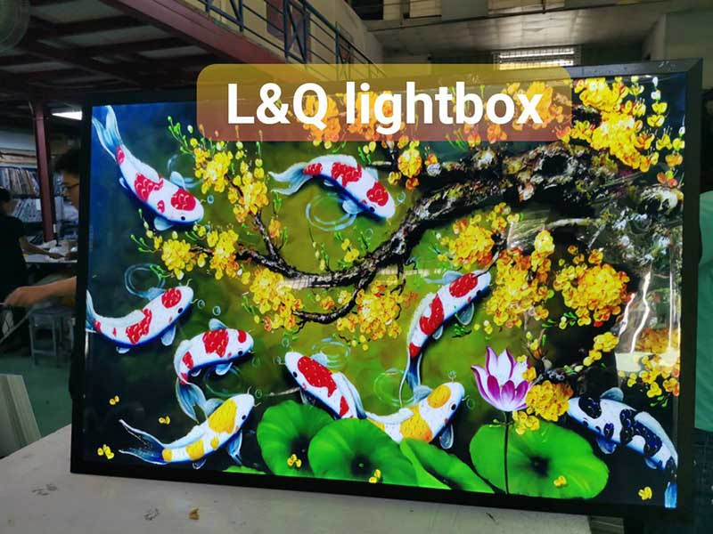 hộp đèn lightbox trang trí cá coi