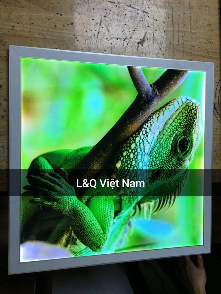 hộp đèn lightbox trang trí nghệ thuật hình động vật