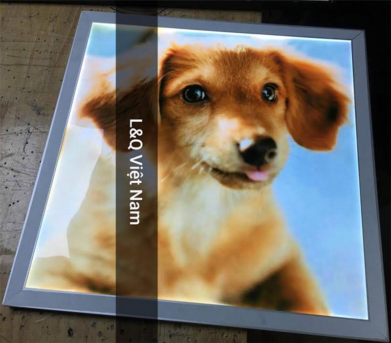 hộp đèn lightbox trang trí hình động vật chó